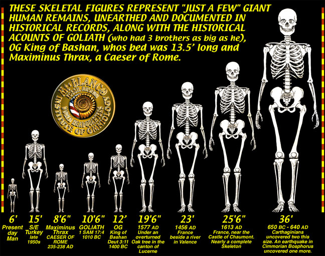 https://rielpolitik.files.wordpress.com/2015/06/a1e11-giant-skeletons-chart.jpg?w=700