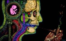 psychedelics-as-medicine