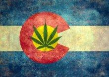 marijuana_co