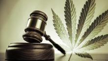 Cannabis-Gavel-Legal