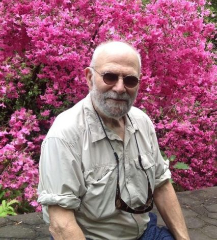 'The Healing Power of Gardens', The Psychological & Physiological Consolations of Nature Oliversacks_botanicalgarden_bi