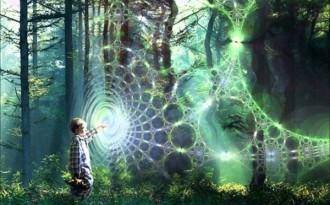 'Morphic Resonance & Morphic Fields', Collective Memory & the Habits of Nature Iu2fcy1xoa